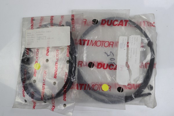 original Ducati Gummiring